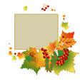 colorful autumn backdrop vector image vector image