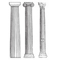 columna fixed vintage engraving vector image vector image