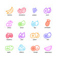 fruits set icons vector image vector image