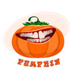 funny pumpkin on white vector image vector image