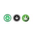 set medical cannabis or marijuana leaf logo hemp vector image