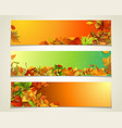 set of bright horizontal fall banners vector image vector image