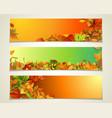 set of bright horizontal fall banners vector image vector image