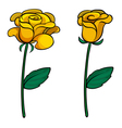Two lovely flowers vector image vector image