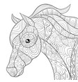 adult coloring bookpage a cute horse image for vector image vector image