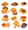 chocolate cookies and gingerbread biscuits vector image vector image