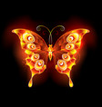 fire butterfly peacock vector image vector image