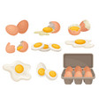 flat set of eggs in different forms raw vector image