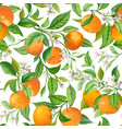mandarin fruit seamless tropical pattern colorful vector image vector image