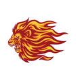 roaring lion flaming fire logo vector image vector image