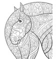 adult coloring bookpage a cute horse image vector image