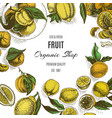 Banner for eco store colorful citrus card