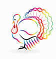 colorful turkey shape vector image