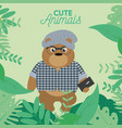 cute hipster bear cartoon vector image vector image