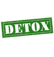 detox sign or stamp on white vector image vector image