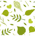green spring leaves various forest trees vector image vector image