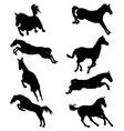 horses in jump vector image vector image