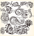 collection decorative elements for design vector image vector image