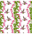 fuchsia and hummingbird seamless pattern vector image vector image
