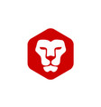 lion head with hexagon vector image vector image