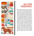 pet shop cat and dog food and care goods banner vector image