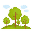 tree landscape forest vector image