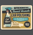 car polishing and auto chemistry service vector image vector image