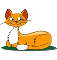 Cartoon Cat on grass vector image vector image