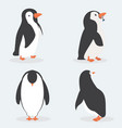 cute penguin characters in different poses set vector image