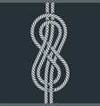 sea boat rope eight knot vector image vector image
