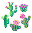 set with cacti and flowers vector image