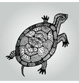 Handdrawing doodle turtle Wildlife collection vector image