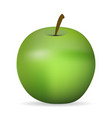 apple with shadow vector image