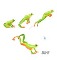 frog jumping by sequence cartoon vector image vector image