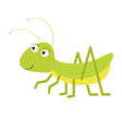 Grasshopper Cute cartoon character White vector image