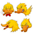 set collection duck head mascot vector image vector image
