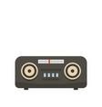 vintage fm radio icon flat style vector image vector image