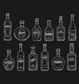 wine tequila vodka cognac alcohol drink bottles vector image