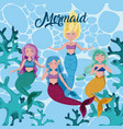 beautiful mermaids cartoons vector image vector image