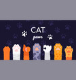 cat paws collection - flat design style vector image vector image