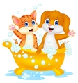 Cute cartoon cat and dog bathing time vector image vector image