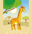 giraffe stands in savannah cute african vector image