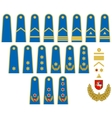 Lithuanian Air Force insignia vector image vector image