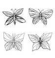 set coloring butterflies isolated white vector image vector image