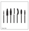 set of brushes mascara vector image