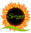 sunflower spring season icon decoration vector image vector image