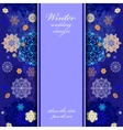 Winter design with golden and blue snowflakes on vector image vector image