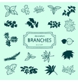 Branches of a tree vector image