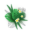 aloha hawaii tropical plants leaves and flowers vector image