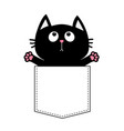 black cat in the pocket ready for a hugging vector image vector image